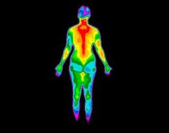 کاربرد ترموویژن ارزان قیمت در فیزیولوژی بدن