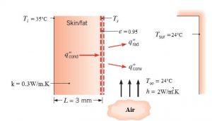 مدل اندازه گیری دمای درونی و پوست بدن